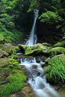 福岡県 福岡市 早良区 花乱の滝