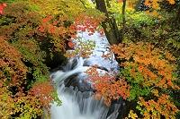 栃木県 龍頭の滝