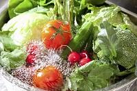 シンクで水洗いされる野菜各種
