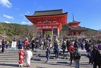 京都府 初詣の清水寺