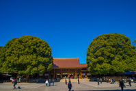 東京都 明治神宮 拝殿 屋根修復後