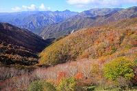 栃木県 秋の日光 半月山からの眺め