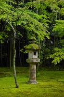 京都府 大徳寺高桐院