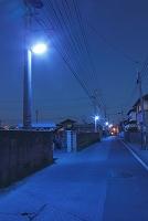 埼玉県 青色防犯灯が灯る町