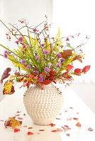 花瓶の野の花と実