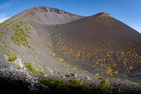 秋色の宝永火口と富士山