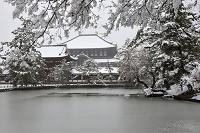 奈良県 雪の東大寺.大仏殿