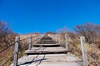 美し森階段