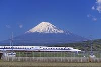 静岡県 新幹線と富士山 N700