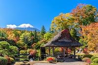 山梨県 庭園の紅葉と富士山