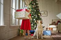 クリスマスを楽しむ犬と女の子