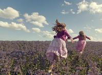 紫色の花畑を走る姉妹