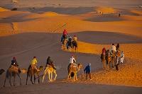 モロッコ サハラ砂漠とラクダツアー