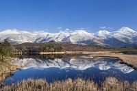北海道 知床五湖 一湖