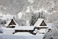 富山県 雪の菅沼合掌集落