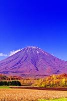 北海道 秋晴れの羊蹄山
