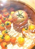 水に浮かぶトマト