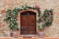 イタリア トスカーナ州 つるバラと木製の玄関