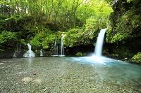 静岡県 新緑の陣場の滝