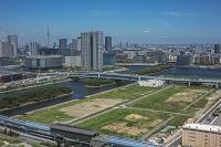有明の建設用地と豊洲周辺のビル群と東京スカイツリー