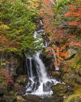 栃木県 秋の竜頭の滝