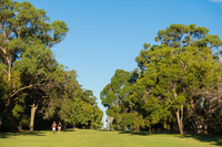 オーストラリア パース キングスパーク