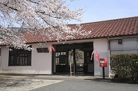 京都府 桜咲く笠置駅