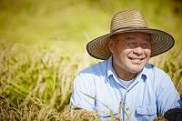 稲穂と笑顔の農夫