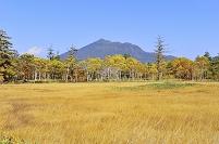 群馬県 尾瀬 研究見本園から望む燧ヶ岳と草原