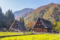 富山県 菅沼集落