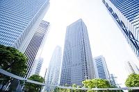 東京都 新宿のビル群