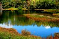 長野県 川上村 池