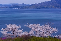 愛媛県 開山公園と瀬戸内海