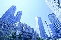 東京都 新宿副都心の高層ビル群