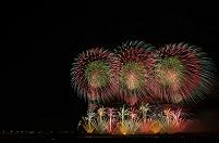 新潟県 右岸有料席から長岡まつり大花火大会 花火「この空の花」