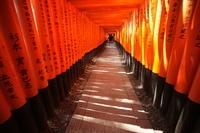 京都伏見稲荷大社の鳥居