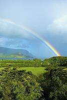アメリカ合衆国 ハワイ ハナレイ・ベイをかける虹