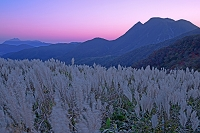 大分県 沓掛山山腹より三俣山と由布岳を望む