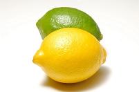 二種類のレモン