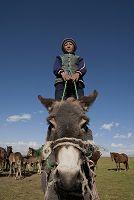 キルギス ロバに乗る少年