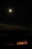 夜中のトンガリキ