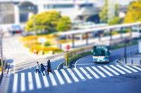 神奈川県 駆ける