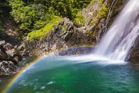 鹿児島県 屋久島 大川の滝