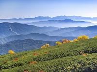 長野県 乗鞍高原 雲海と山並み