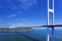 愛媛県 糸山海峡展望館前より来島大橋三連吊橋と来島海峡