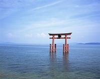 滋賀県・高島市 琵琶湖と白髭神社の鳥居