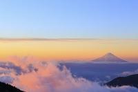 埼玉県 甲武信ヶ岳 山頂付近より望む雲海に浮かぶ夜明けの富士山