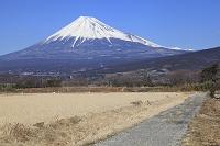 静岡県 富士山と農道