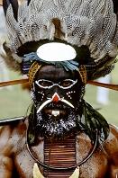 パプアニューギニア 部族の男性