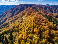 青森県 白神山地 紅葉